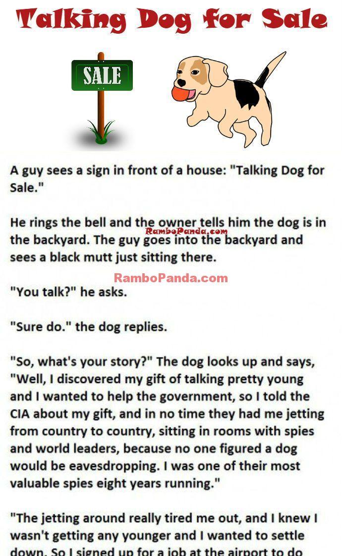 Dog Jokes   RamboPanda